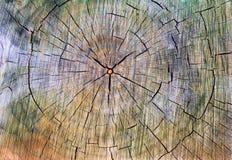 Struttura di legno incrinata colorata con i cerchi Fotografie Stock