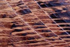 Struttura di legno leggera Immagine Stock Libera da Diritti