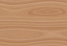 Struttura di legno leggera senza cuciture del modello La struttura senza fine può essere usata per la carta da parati, i material Fotografia Stock