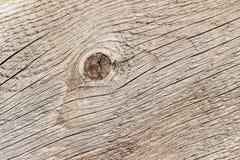 Struttura di legno naturale del primo piano la vecchia con la crepa stagionata allinea, curve, turbinii Dettaglio del profilo inc Fotografia Stock Libera da Diritti