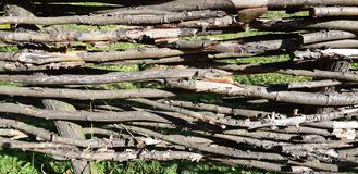 Struttura di legno nociva afflitta in tonalità di bianco e di grigio immagine stock