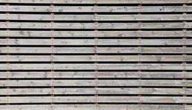 Struttura di legno non colorata della parete Fotografia Stock Libera da Diritti