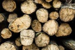 Struttura di legno, progettazione materiale naturale per interno ed esteriore, G Fotografia Stock
