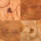Struttura di legno rustica Immagini Stock Libere da Diritti