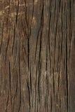 Struttura di legno scura Struttura marrone di legno vecchi comitati del fondo Priorità bassa rustica L'annata colorata sorge Immagine Stock