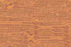 Struttura di legno senza cuciture Fotografie Stock Libere da Diritti