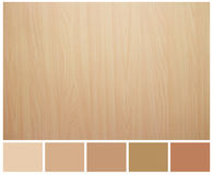 Struttura di legno senza cuciture con la guida della tavolozza colorata Fotografie Stock Libere da Diritti