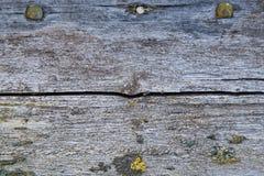 Struttura di legno stagionata del fondo Fotografie Stock Libere da Diritti