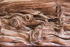 Struttura di legno Superficie di fondo di legno scuro per il decorat di progettazione Immagine Stock Libera da Diritti