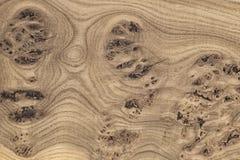 Struttura di legno unica con i nodi e le crepe Fotografie Stock