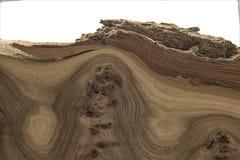 Struttura di legno unica con i nodi e le crepe Fotografia Stock