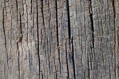 Struttura di legno usata per fondo Fotografia Stock Libera da Diritti
