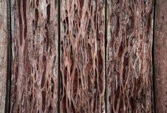 Struttura di legno vecchi comitati del fondo Immagini Stock Libere da Diritti
