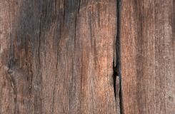 Struttura di legno, vecchi pannelli del fondo Immagini Stock Libere da Diritti