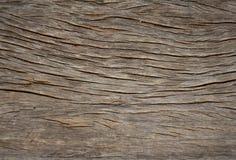 Struttura di legno, vecchi pannelli del fondo Fotografia Stock