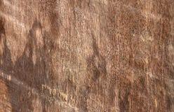 Struttura di legno, vecchi pannelli del fondo Fotografia Stock Libera da Diritti