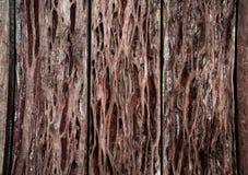 Struttura di legno vecchi pannelli del fondo, parete di legno Fotografia Stock