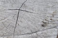 Struttura di legno vecchio pannello del fondo Fotografia Stock Libera da Diritti