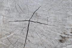 Struttura di legno vecchio pannello del fondo Fotografia Stock