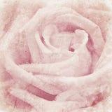 Struttura di lerciume con fondo floreale con il fuoco selettivo molle, Fotografia Stock