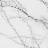 Struttura di marmo bianca Fotografia Stock