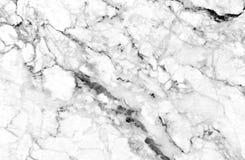Struttura di marmo bianca con i lotti di contrapposizione audace che venato Immagine Stock