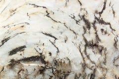 Struttura di marmo bianca (di alta risoluzione) Fotografia Stock