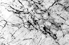 Struttura di marmo bianca, struttura dettagliata di marmo (alto resolut Immagini Stock Libere da Diritti
