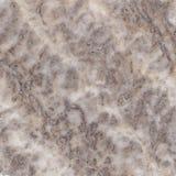 Struttura di marmo del Brown Fotografia Stock