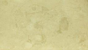 Struttura di marmo di alta qualità. Lotus Fotografie Stock