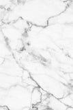 Struttura di marmo grigia bianca, struttura dettagliata di marmo in naturale modellato per fondo e progettazione Immagini Stock Libere da Diritti