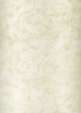Struttura di marmo poroso Immagini Stock Libere da Diritti
