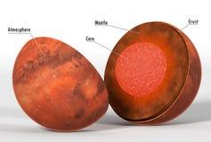 Struttura di Marte in una rappresentazione realistica con i titoli Fotografia Stock