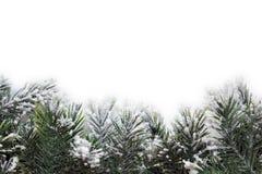 Struttura di Natale Fotografie Stock Libere da Diritti