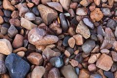 Struttura di piccole pietre brillanti bagnate del mare Immagini Stock