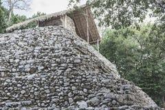 Struttura di pietra antica alle rovine maya di Coba, Messico Immagine Stock Libera da Diritti
