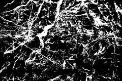 Struttura di pietra in bianco e nero Marmo con il fondo rintracciato di superficie delle vene Struttura naturale capricciosa illustrazione vettoriale