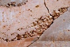 Struttura di pietra incrinata della parete di colore della sabbia fotografie stock