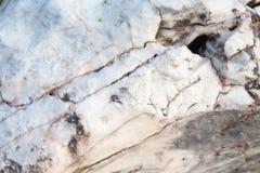 Struttura di pietra mable bianca leggera fotografia stock libera da diritti