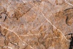 Struttura di pietra naturale con il modello e la struttura unici della superficie Immagini Stock Libere da Diritti