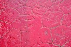 Struttura di pietra rossa del fondo dell'estratto per pavimentare immagini stock