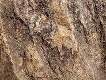 Struttura di roccia sulla spiaggia immagini stock