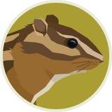 Struttura di Rounde degli animali di Forest Wildlife Vector della tamia illustrazione vettoriale