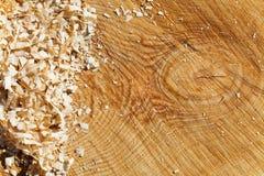 Struttura di sezione trasversale dell'albero di pino Fotografia Stock Libera da Diritti