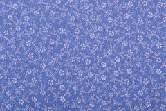 Struttura di tela del tessuto del cotone Immagini Stock