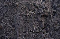 Struttura di terra fertile scura con le basi immagini stock