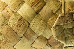 Struttura di tessitura del reeds-2 Immagini Stock Libere da Diritti