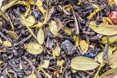 struttura di tisana asciutta con le bacche e le foglie dei mirtilli e dei mirtilli rossi, fondo di astrazione della bevanda dell' fotografia stock libera da diritti