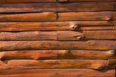 Struttura di uso del legno della corteccia come naturale Immagine Stock Libera da Diritti