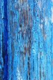 Struttura di vecchia pittura blu sull'albero Immagine Stock